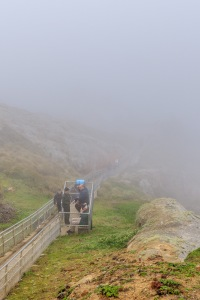 Thick fog near Point Reyes Lighthouse