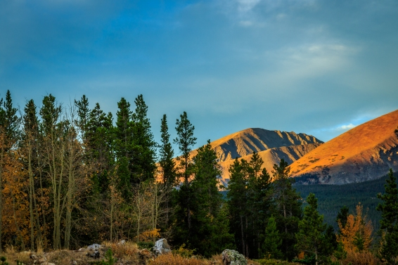 Sunrise lighting up mountain tops above the tree line